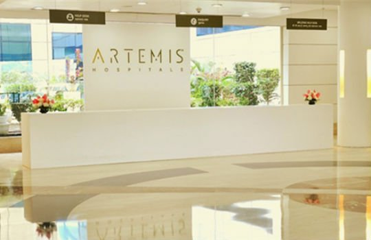 artemis reception