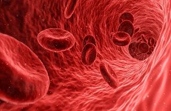 Can Stem cells (Bone Marrow Transplant) cure Thalassemia